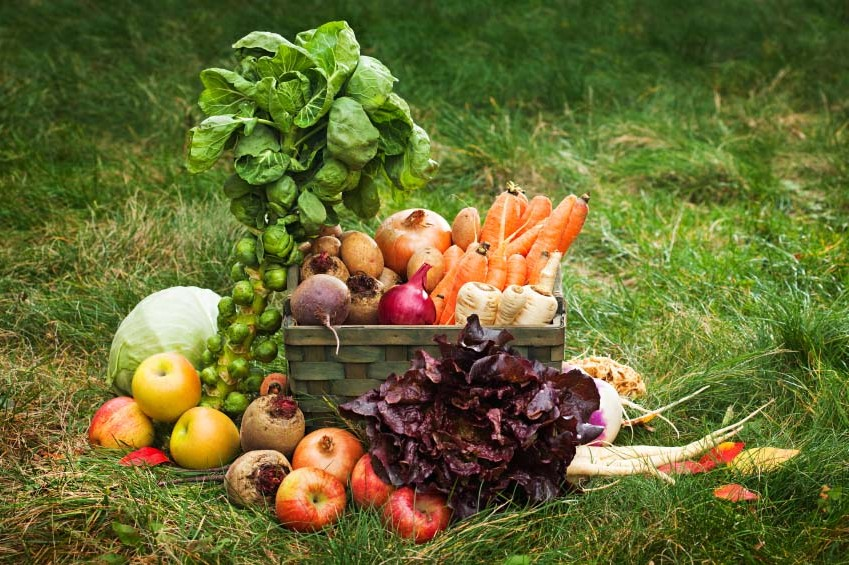 1 CSA box. Photo by iStockPhoto
